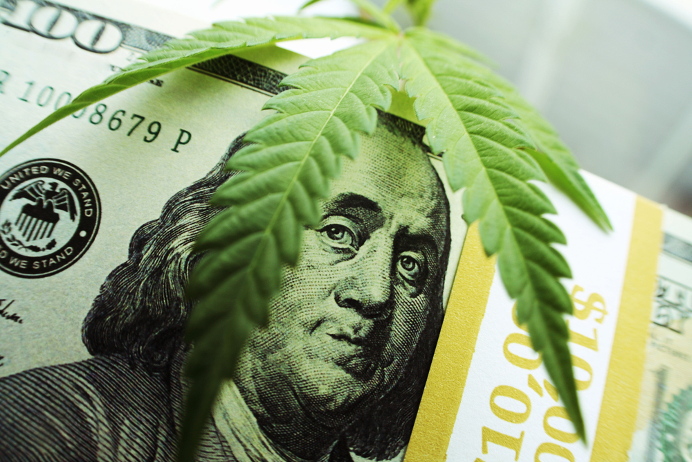 The Grass Isn't Always Greener: The Risks of Marijuana Stocks