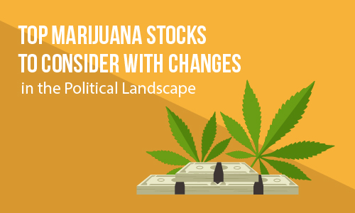 Top Marijuana Stocks to Consider With Changes in the Political Landscape