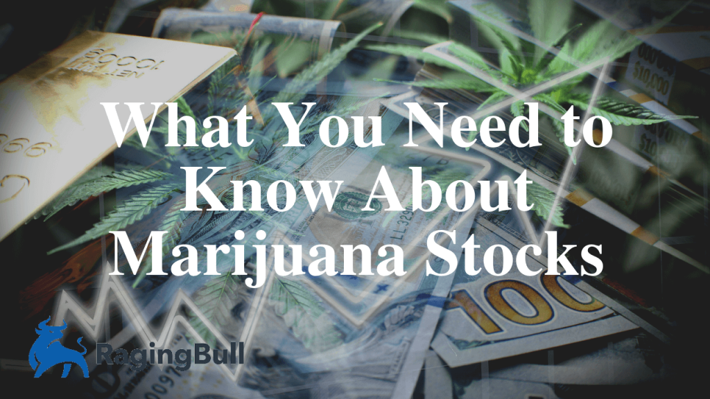 What You Need to Know About Marijuana Stocks