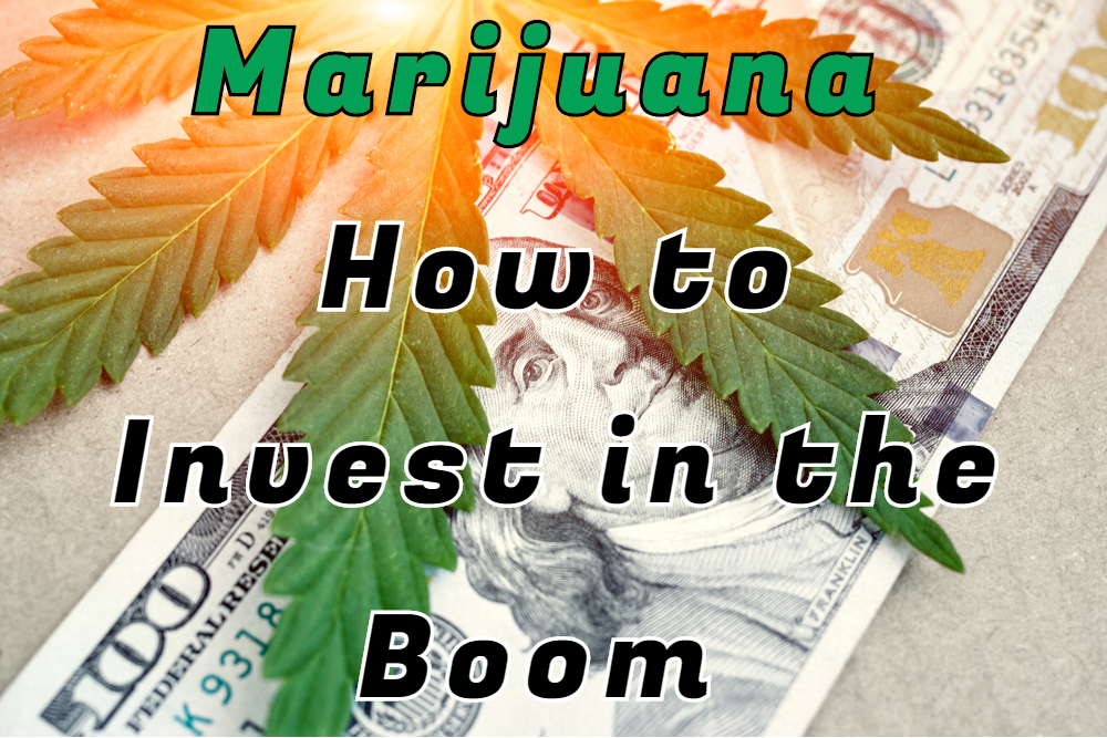 Marijuana Cannabis stocks investing trading