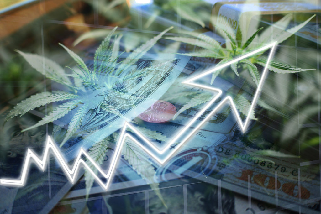 A Guide to Investing in Marijuana Stocks - RagingBull