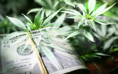 Wall Street Scandal: Cannabis Scheme Goes Up In Smoke